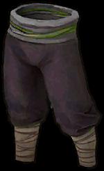 Apprentice's Pants